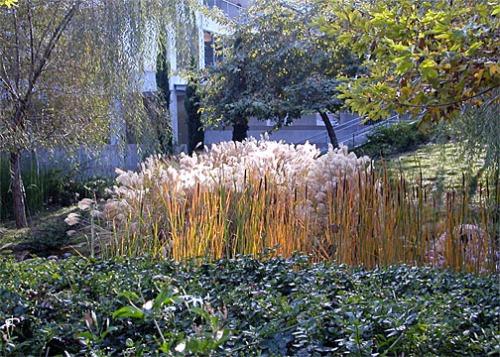 skirball garden